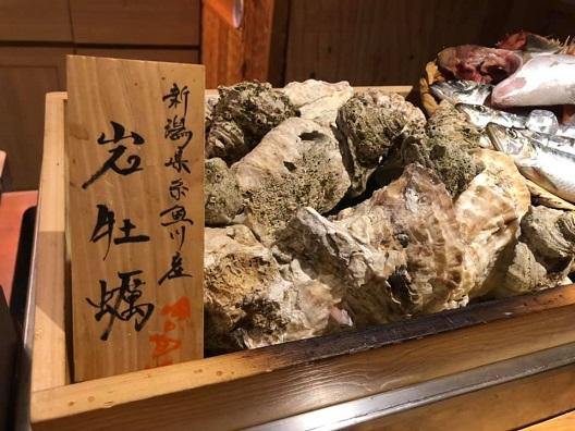 【国分寺】炉端 丸八15.jpg
